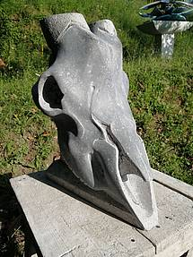Skull by Tobia Silvotti